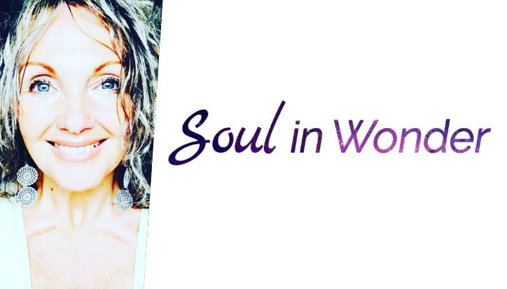 soul in wonder excerpt