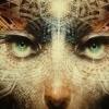 Archons: Forces of Anti-Awakening